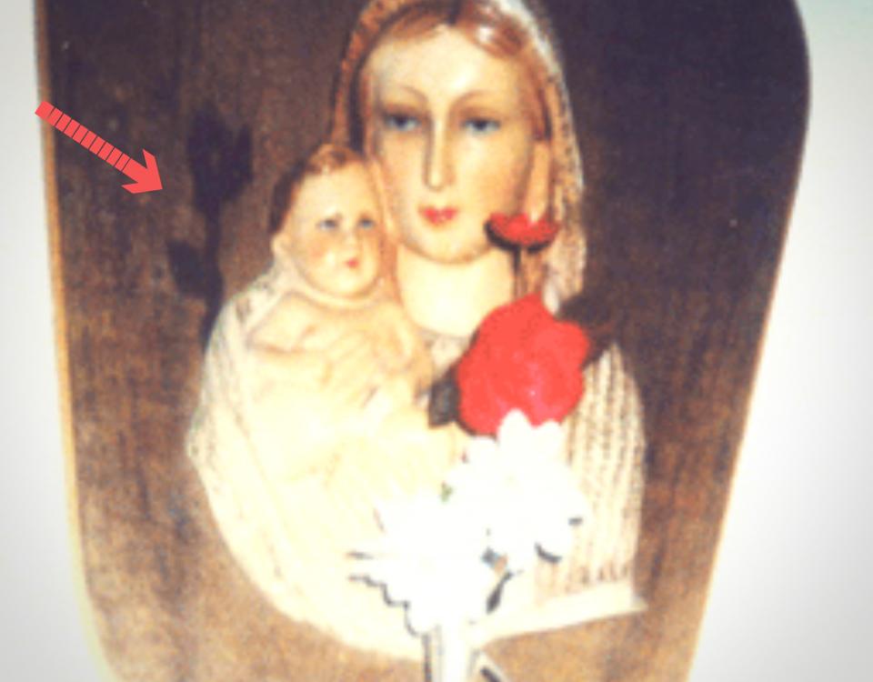 GMD_Madonna_con_fiore